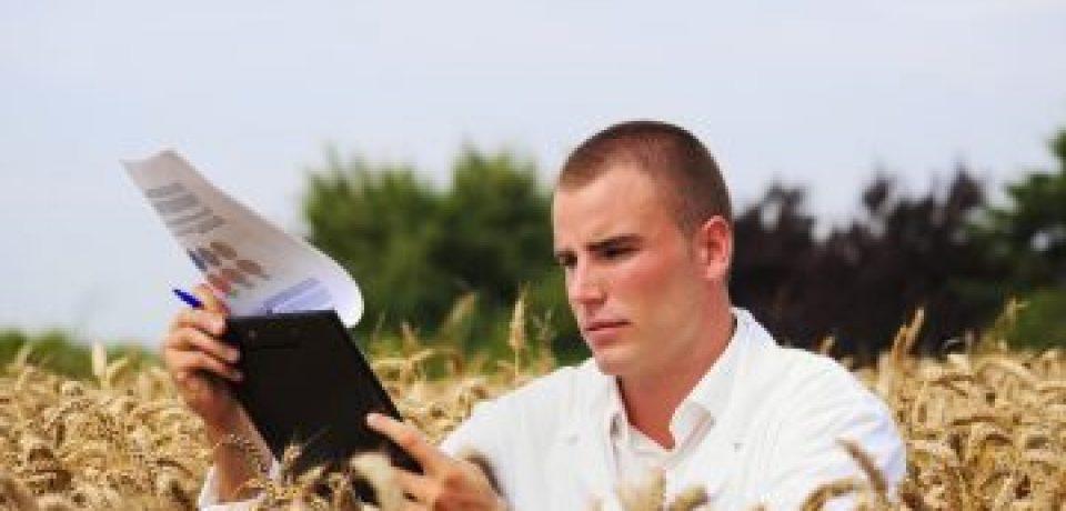 Évolution de l'organisation des activités d'appui à l'enseignement agricole