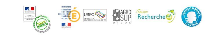 logos-e-fran_silva_numerica
