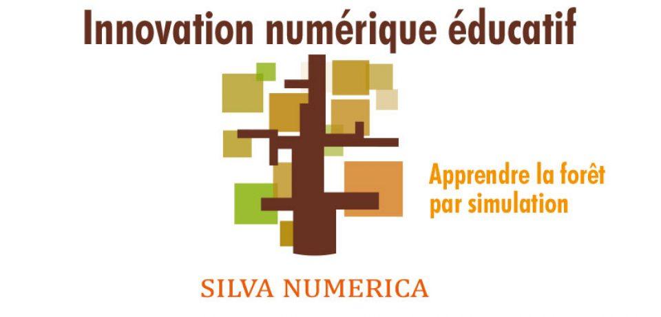 Silva numerica : une plateforme de réalité virtuelle appliquée à l'environnement forestier