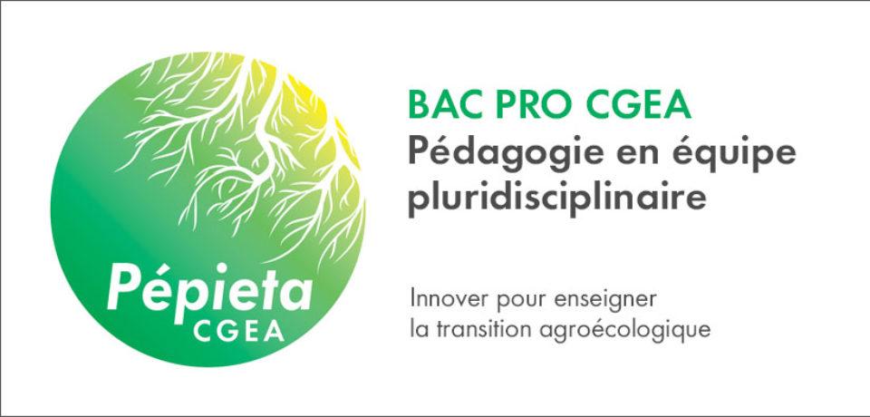 PEPIETA-CGEA : une formation action