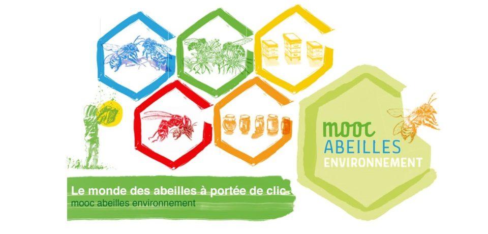 Lancement du Mooc Abeilles et environnement