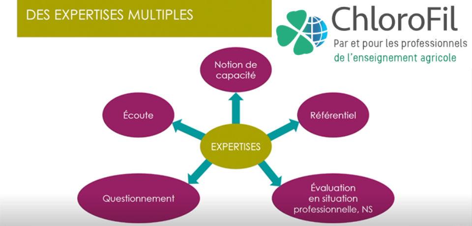 Vidéos «Entretiens d'évaluation» BP REA