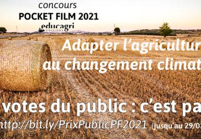 Ouverture des votes du public – Concours Pocket Film